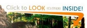 Look Closer Image