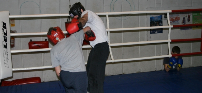 3 Count: Knockout Punch Image