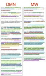 DMN Plagiarism Example 1
